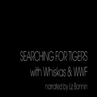 Sienna Rose Allcock-Mead - Whiskas & WWF Searching for Tigers AK 2013