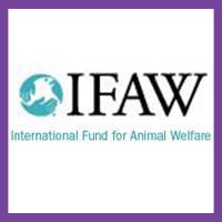 Hattie in IFAW P.U.P.S. Campaign  - 2016